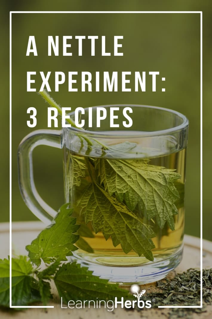 How To Figure Out the Best Herbal Remedies